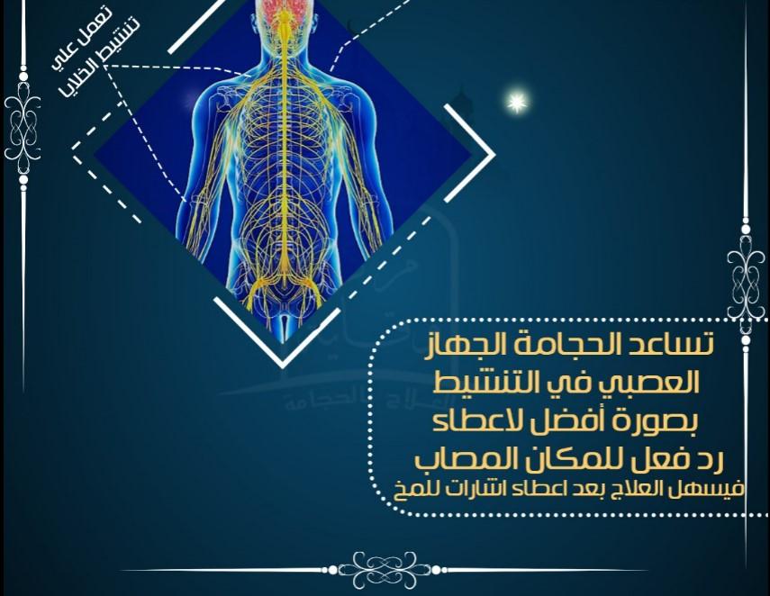 مطوية حجامة الجهاز العصبي